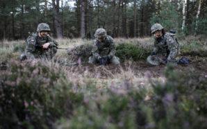 Wojska obrony terytorialnej rosną w siłę