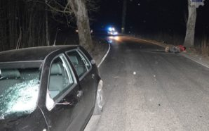 Policjanci pracowali na miejscu wypadku drogowego