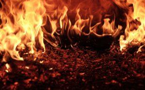 Oświadczenie Zarządu Grupy Iglotex w związku z pożarem w zakładzie…