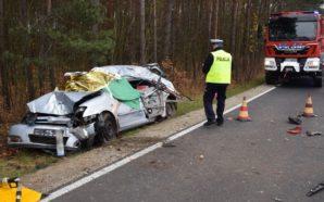 Policjanci pracowali na miejscu śmiertelnego wypadku drogowego