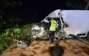Boxer uderzył w drzewo. Policjanci wyjaśniają okoliczności wypadku