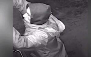Policjanci publikują wizerunki włamywaczy