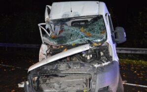 Uderzył Fiatem w drzewo. Mundurowi wyjaśniają okoliczności wypadku.